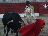 Navasfrias - Se cortaron 8 orejas y un rabo para acabar bien las fiestas del Carnaval del toro 2011