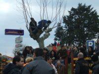 Navasfrias - Las primeras exclusivas del carnaval del toro 2011 ya están aquí