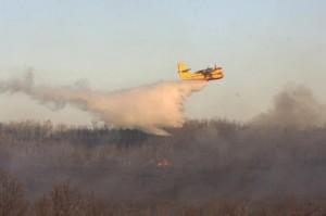 Navasfrias - El incendio de Navasfrías tras calcinar 30 hectáreas de pino y roble, por fin controlado