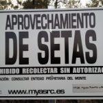 NEW TRAFFIC SIGNAL Navasfrías