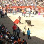 Ciudad Rodrigo, carnaval del toro, Carteles de los festivales taurinos de sábado y martes de Carnaval