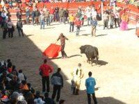 Navasfrias - Ciudad Rodrigo, carnaval del toro, Carteles de los festivales taurinos de sábado y martes de Carnaval