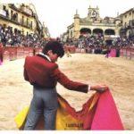 Start the countdown to Carnival del Toro.