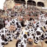 Bull Carnaval Ciudad Rodrigo, Basis for the costume contest, mood floats and costume groups street