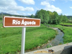 Navasfrias - España y Portugal llevan a cabo un proyecto de investigación sobre más de 40 km sobre el río Águeda