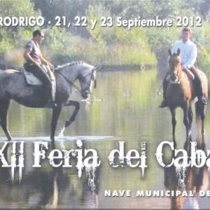 Navasfrias - Ciudad Rodrigo acoge unas justas medievales en la XII Feria del Caballo