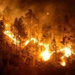 Incendio cerca de Navasfrias
