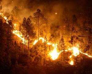 Navasfrias - Incendio cerca de Navasfrias