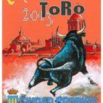 Countdown Carnival of Ciudad Rodrigo Toro