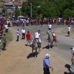 Navasfrías San Juan 2013, Bull Saturday
