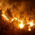 Incendio en la Lageosa (Portugal)