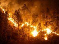 Navasfrias - Incendio en la Lageosa (Portugal)