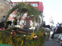 Navasfrias - A Revolera Romeria San Isidro