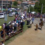 Navasfrias encierro San juan 2014