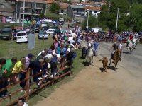 Navasfrias - Navasfrias encierro San juan 2014