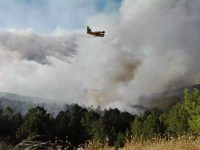 Navasfrias - Incendio Sierra de Gata