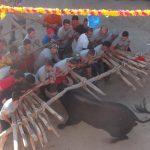 Foios 2015 impactante imagen del toro y el forcon