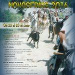 Navasfrias poster San Juan 2016