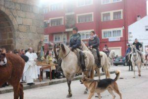 Navasfrias - Procesión San Anton patrón animales