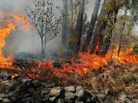 Navasfrias - Navasfrias fuego en Mata guarda