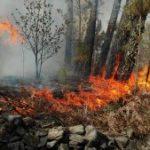Navasfrias fuego en Mata guarda