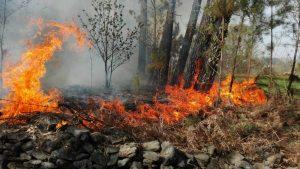 Navasfrias - Incendio Navasfrias