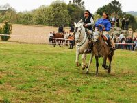 Navasfrias - A Revolera ruta a caballo 22 Abril