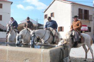 aRevolera_caballos